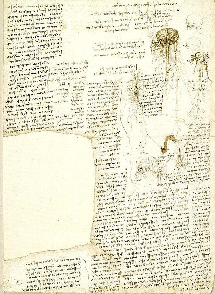 Manuskrypt notatek Leonarda Da Vinci