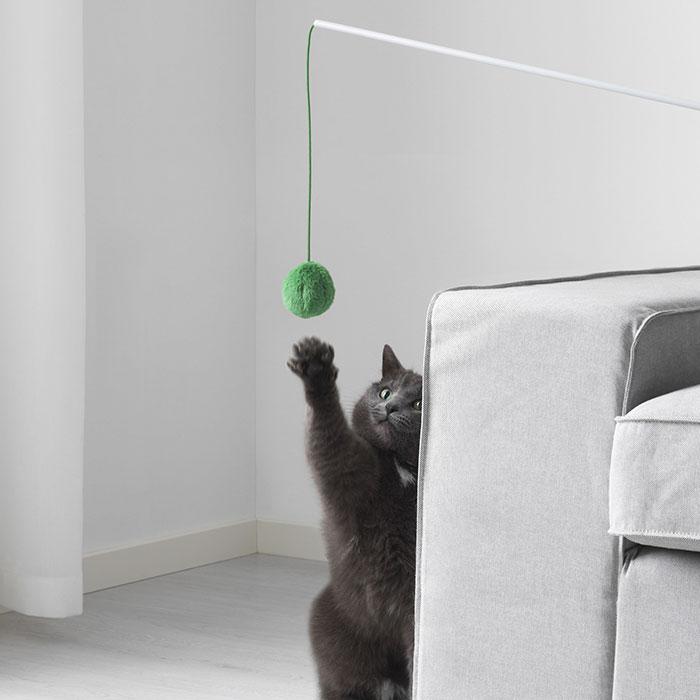 Kot bawiący się zieloną kulką na sznurku