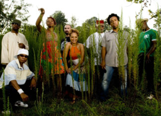 Grupa czarnoskórych ludzi stojąca na tle wysokiej trawy