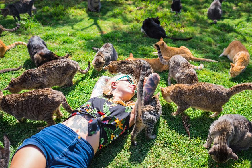 Dziewczyna leżąca wśród gromadki kotów