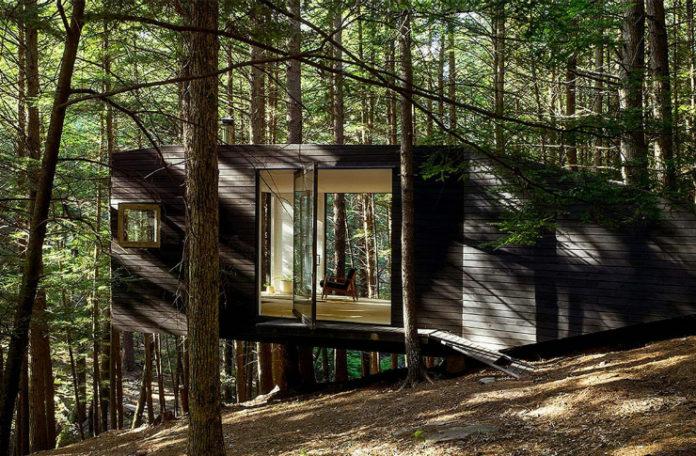 Drewniany dom w środku lasu