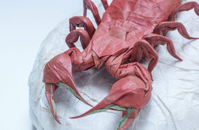 skorpion - origami
