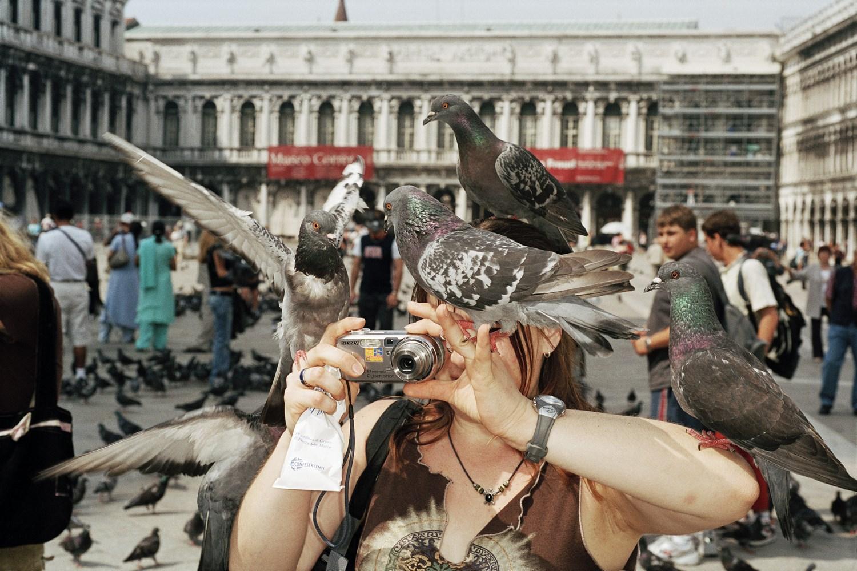 Zdjęcie kobiety robiącej zdjęcie, na której są gołębie.