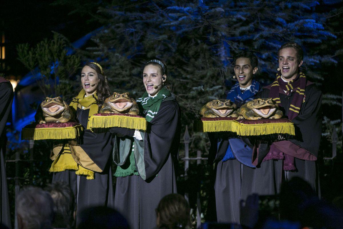 4 osoby stojące w takich samych mundurkach, z żabami na rękach