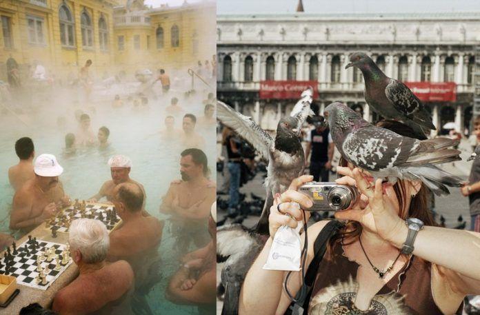 Dwa zdjęcia z wakacji: na jednym ludzie w wodzie grają w szachy, na drugim kobieta została zaatakowana przez gołębie