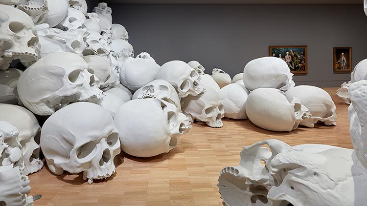 Kilkanaście czaszek ujętych na wystawie w National Gallery w Victorii. Widać podłogę i sufit galerii.