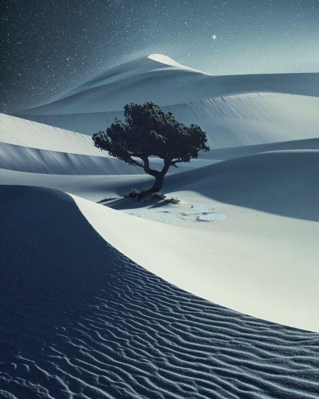 krajobraz zimowy, wszedzie gory sniegu, a w oddali drzewo