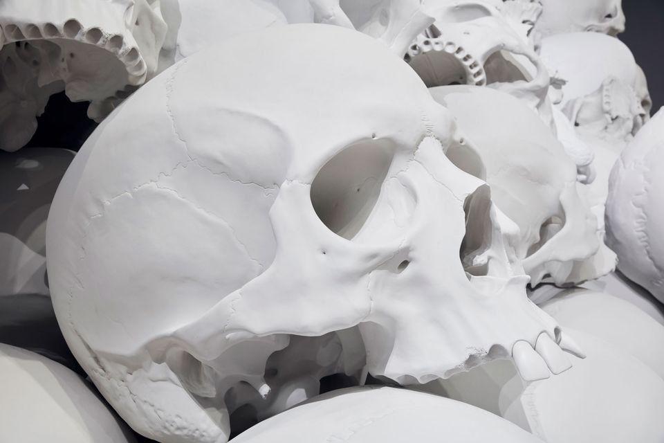 Rzeźba 1,5-metrowej czaszki z wystawy Mass Rona Muecka w National Gallery w Victorii, ujęta z boku