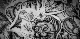 Zdjęcie przedstawia szkice tatuaży z twrzą kota