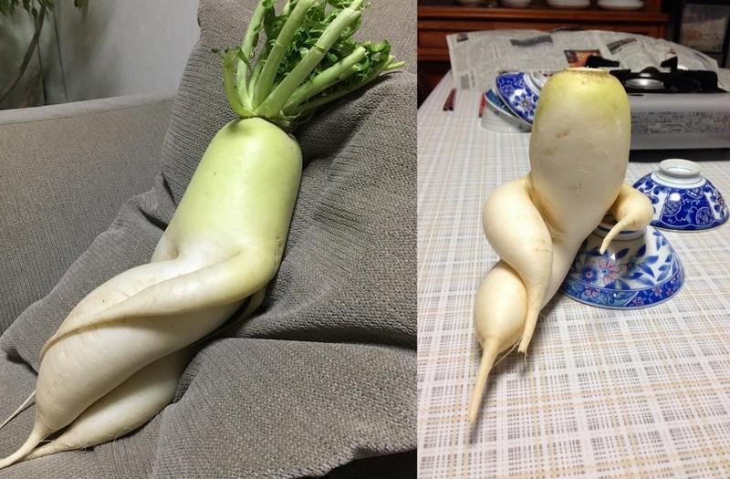 seksowne zdjęcia z makaronem