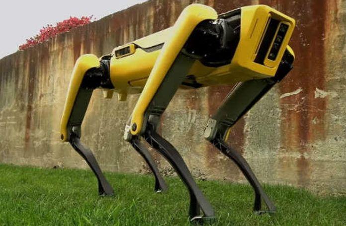 Pies-robot