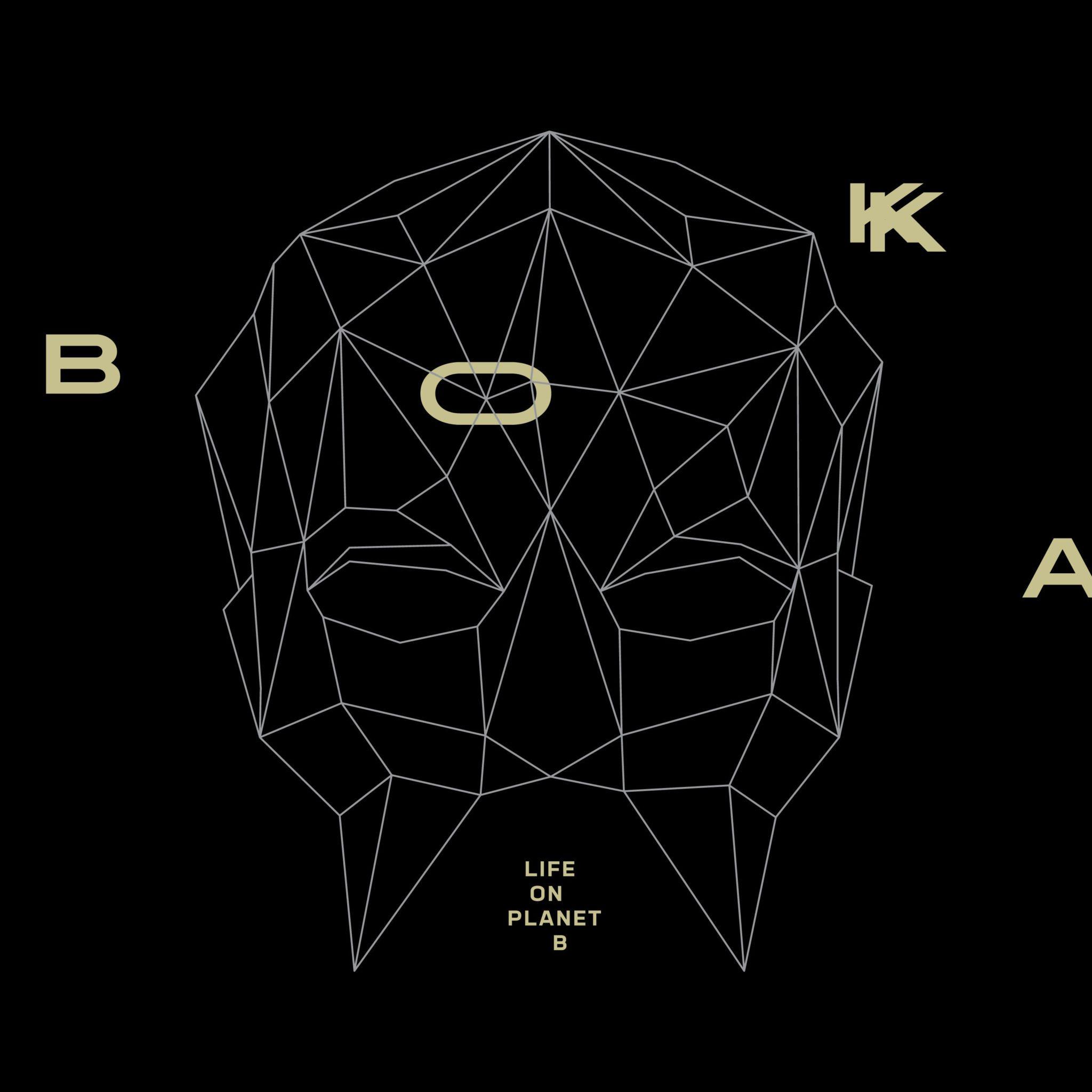 Okładka płyty Bokka