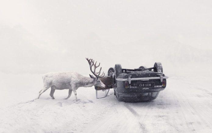 Ośnieżony jeleń obok samochodu stojącego na dachu w śnieżnym krajobrazie.