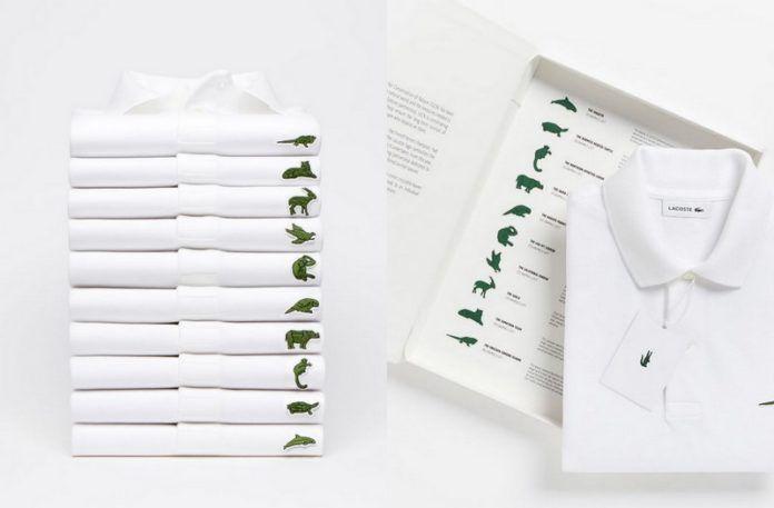 10 koszulek Lacoste, a obok jedna w opakowaniu