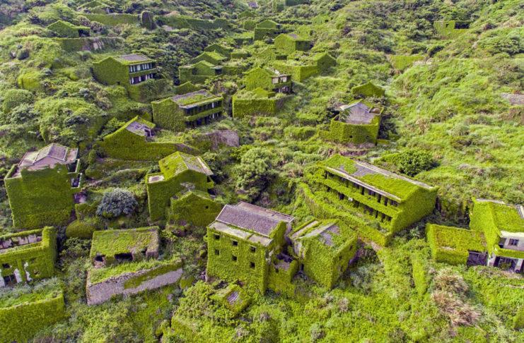 Opuszczona wioski, domy porośnięte winoroślami
