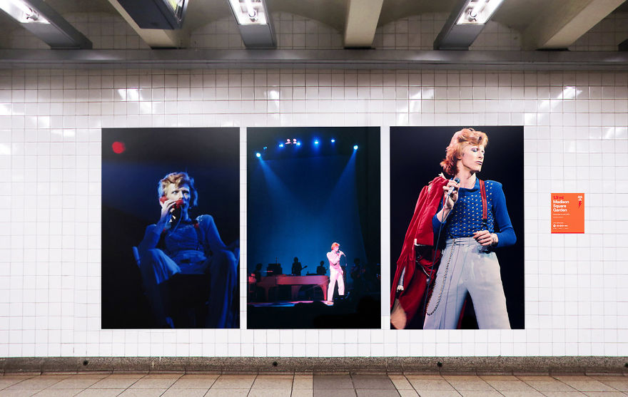 Trzy zdjęcia Davida Bowiego na białej ścianie metra