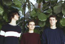 Trzech młodych chłopców na tle zielonych liści