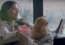 Dziewczyna leżąca z kotem i tabletem