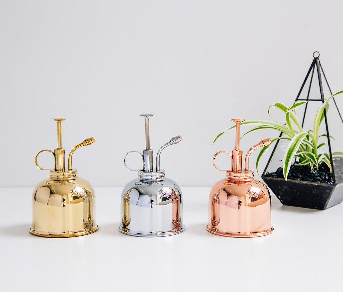 Zdjęcie przedstawiające trzy rozpylacze i roślinę