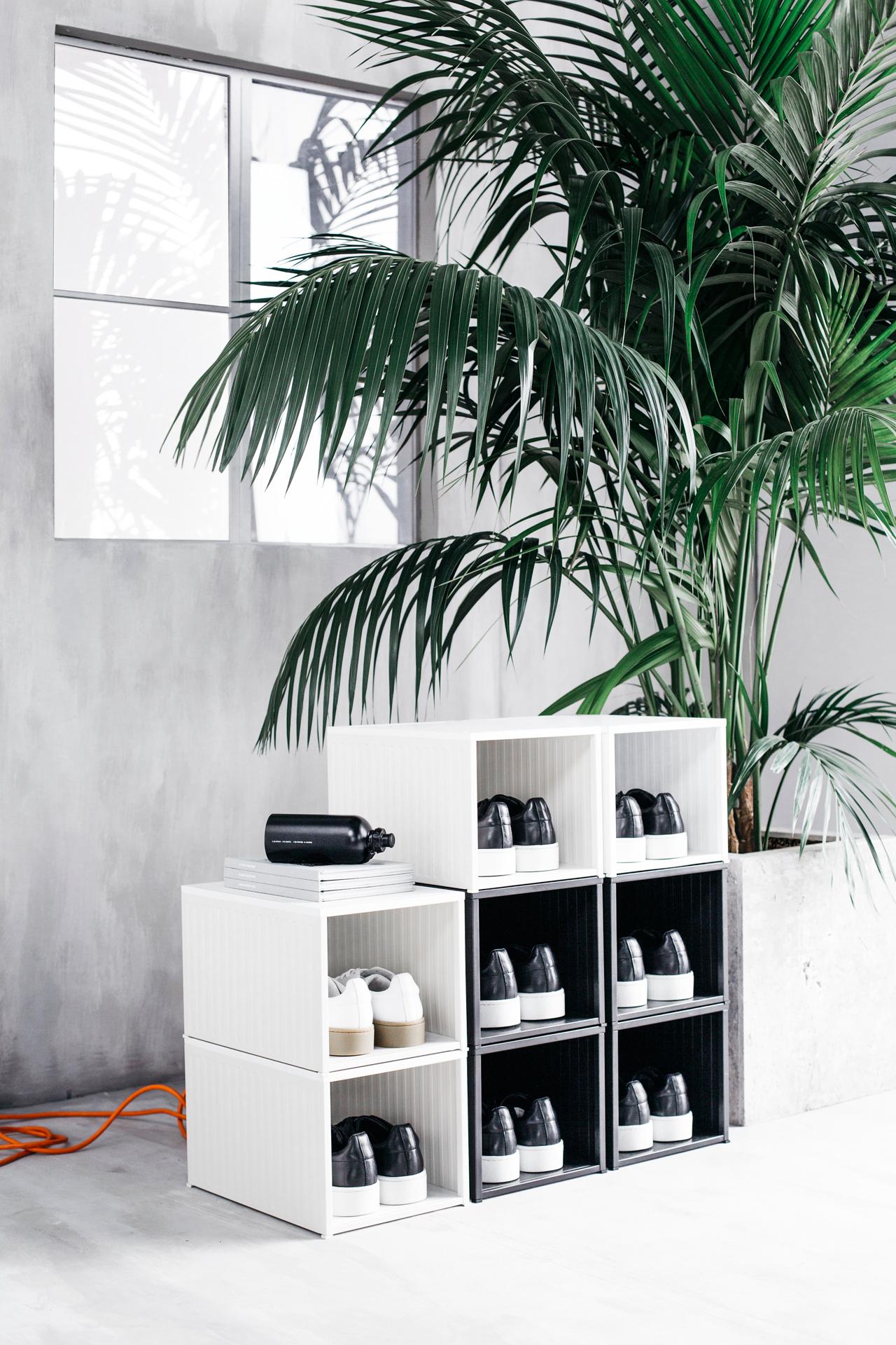 Białe modułowe półki na buty w minimalistycznym betonowym wnętrzu, obok palma.