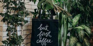 Wnętrze z roślinami w doniczkach i torbą z napisem But First, Coffee