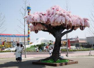 Kwitnące drzewo wiśniowe zrobione z klocków Lego na tle placu zabaw.