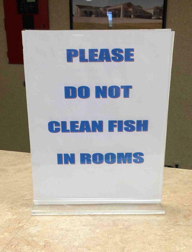 Karta, zeby nie czyscic ryb w pokoju