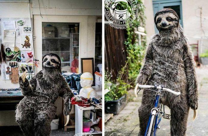 Dwa zdjęcia przedstawiające gignatyczny kostium leniwca