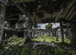 Zarośnięte zielenią ruiny domu