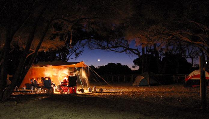 Nocne zdjęcie kempingu w Australii z podświetlonym namiotem rozbitym pod drzewami.