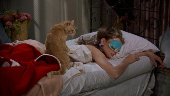 Kobieta leżąca w łóżku z kotem na plecach