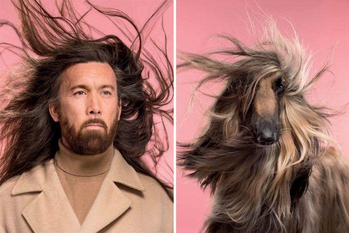 Mężczyzna na różowym tle wyglądający tak, jak jego pies