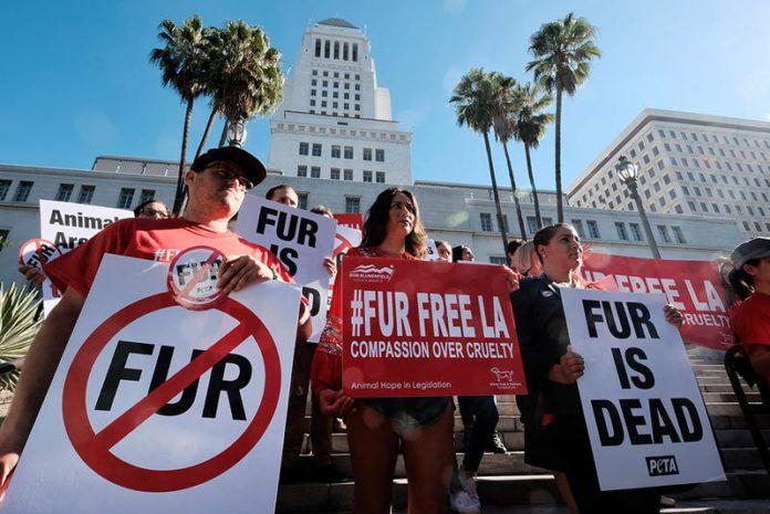 Ludzie manifestujący przeciwko futrom