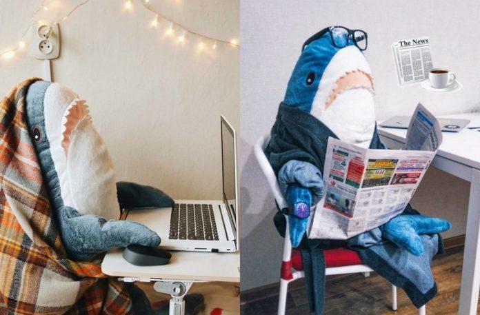 Pluszowy rekin z IKEA
