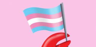 emoji kraba trzymające flagę trans