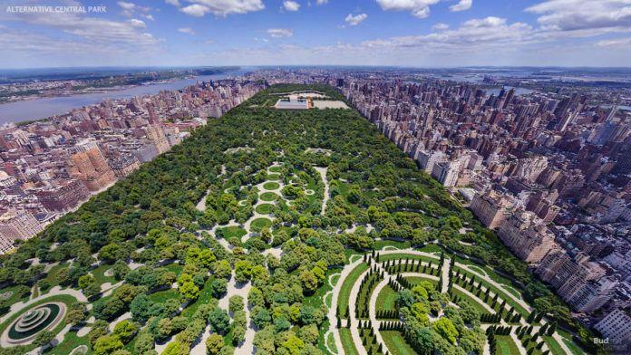 widok parku z góry