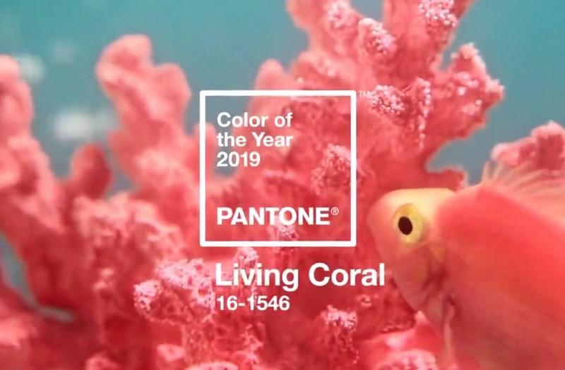 "6a8a387cc70f13 Kolorem roku 2019 według Pantone został ""Living Coral"" - Magazyn HIRO"