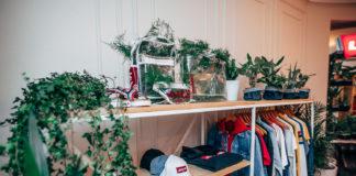 Nowa kolekcja Levi's na wieszakach i rośliny na półkach
