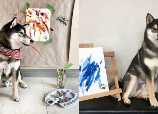 Pies malujący obrazy