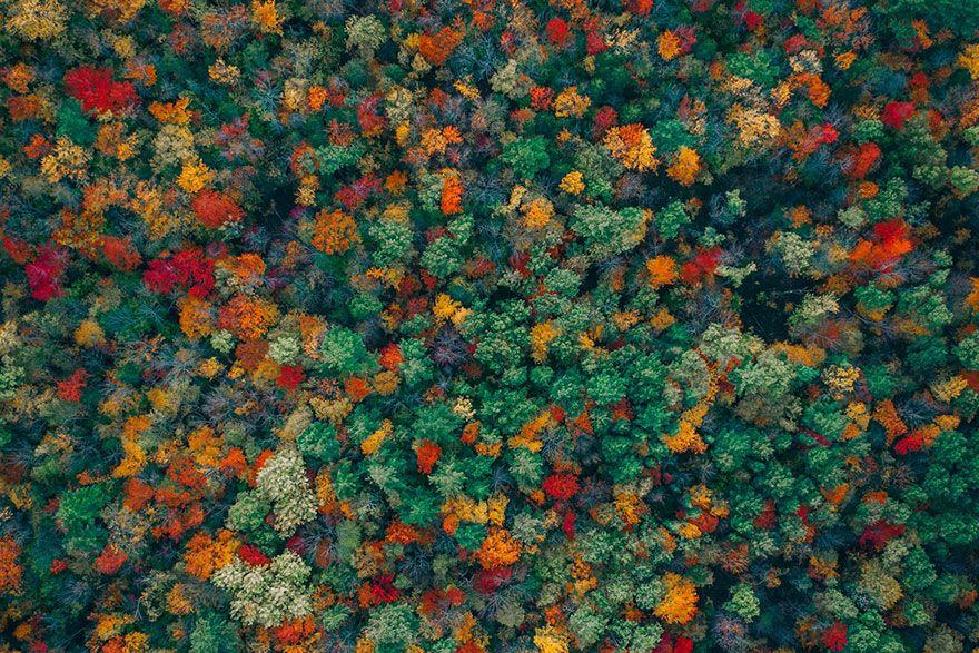 najlepsze zdjęcia zrobione dronem