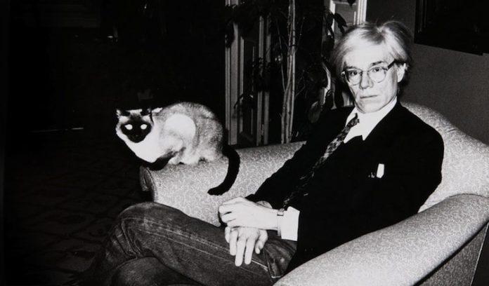 Mężczyzna z kotem na kolanach