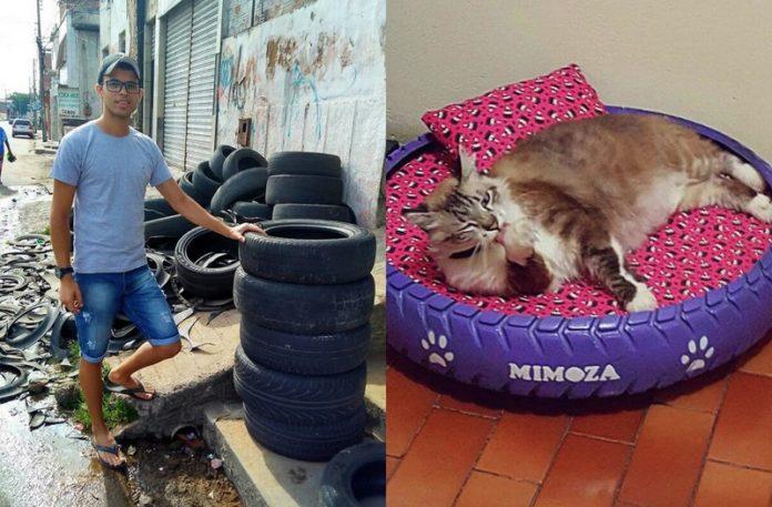 Mężczyzna stojący obok stosu opon i kot w łózku z opony
