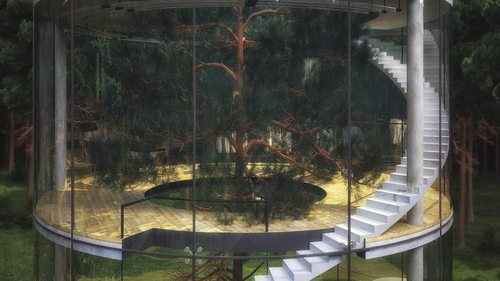 Wnętrze domu z drzewem w środku