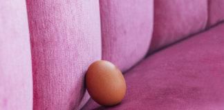 Jajko leżące na kanapie