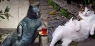 Pomnik kota i zdjęcie kota opartego o chodnik
