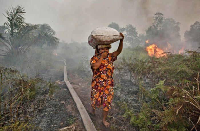 kobieta z workiem na głowie biegnie przez płonącą plantacje palmy olejowej
