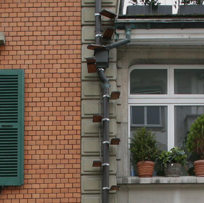 Drabinki dla kotów przy budynku