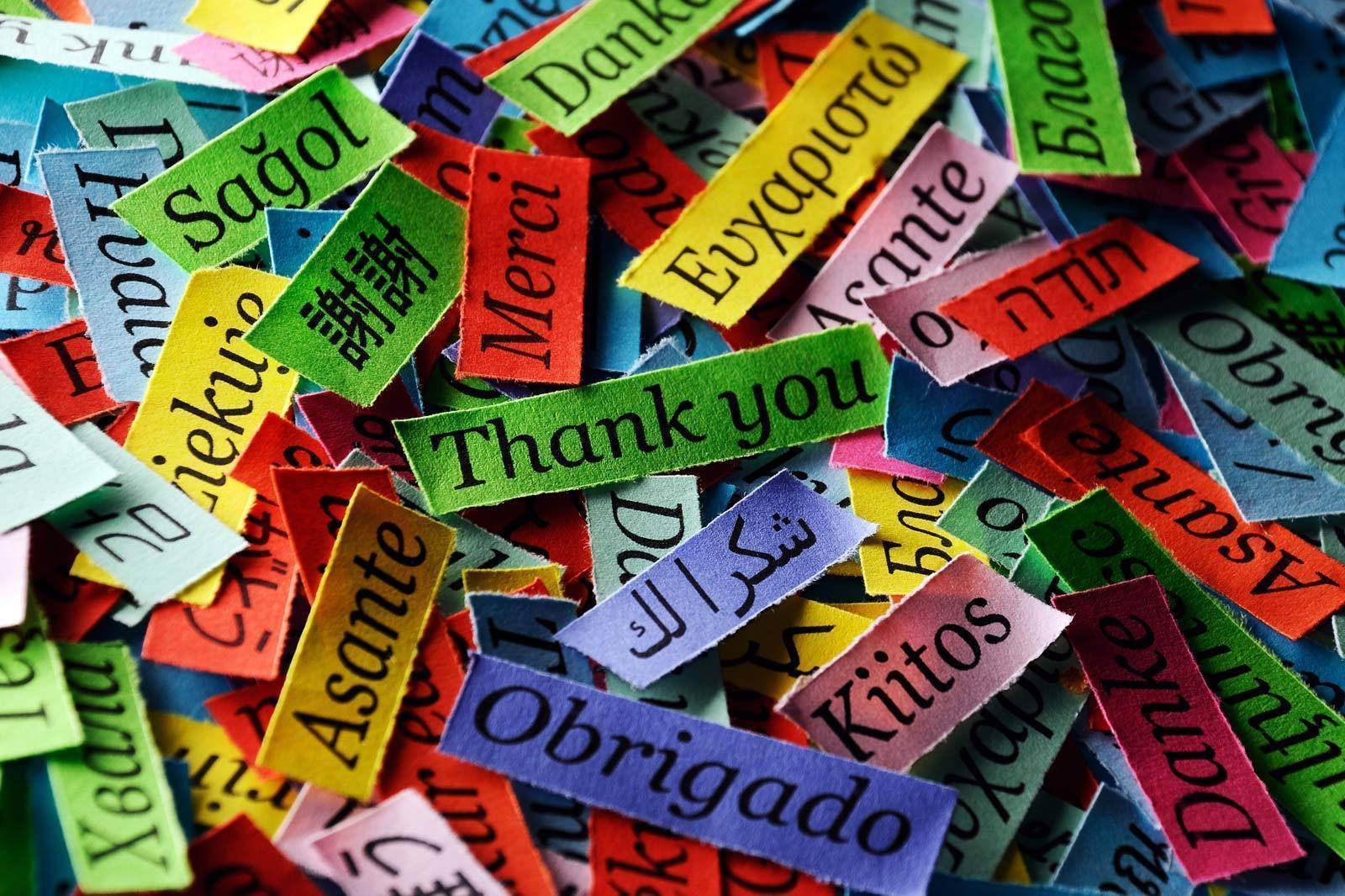 Karteczki ze słowem dziękuję w różnych językach