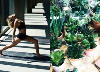 Kobieta wykonująca jogę i zielone rośliny w doniczkach