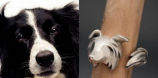 Pies i pierścionek, który wygląda jak pyszczek psa